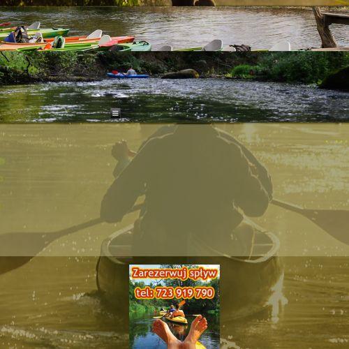Spływy kajakowe po Wieprzu